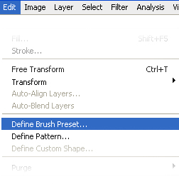Define Brush Preset