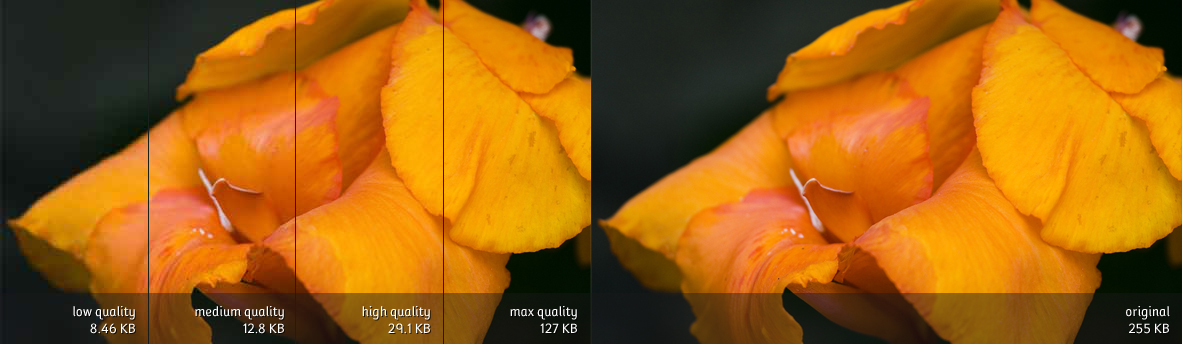 Comparison of JPEG compression presets