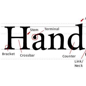 Typeface Typeface Anatomy | RM.