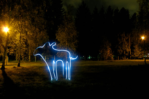 light moose