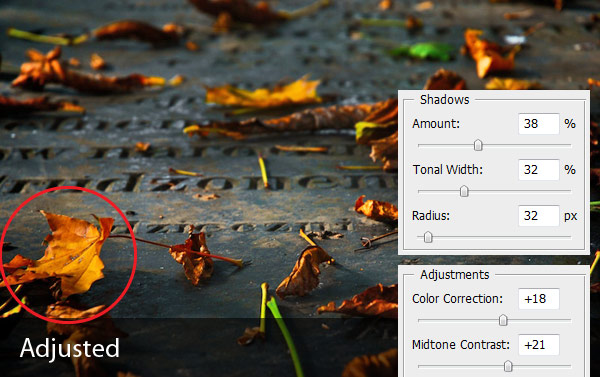 cc1 - Correcting Exposure with the Shadows & Highlights Tool