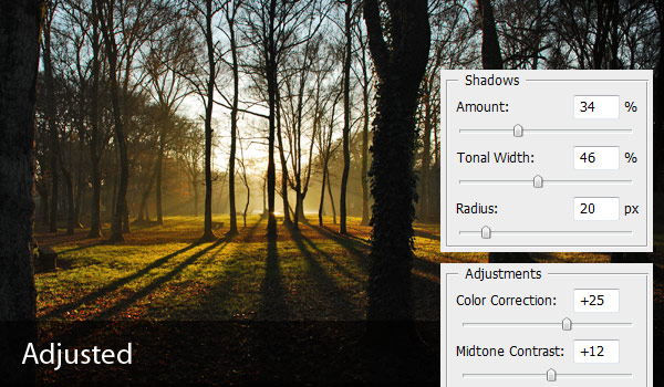 p3 2 - Correcting Exposure with the Shadows & Highlights Tool