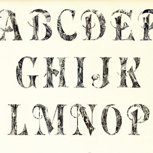 Not Your Usual Characters 30 Amazing Alphabet Recreations